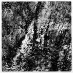 Tree Reflections, Glen Maye