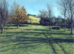Arboretum, St Johns